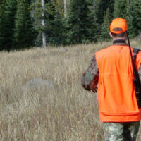 Most Important Hunting Tool Blog