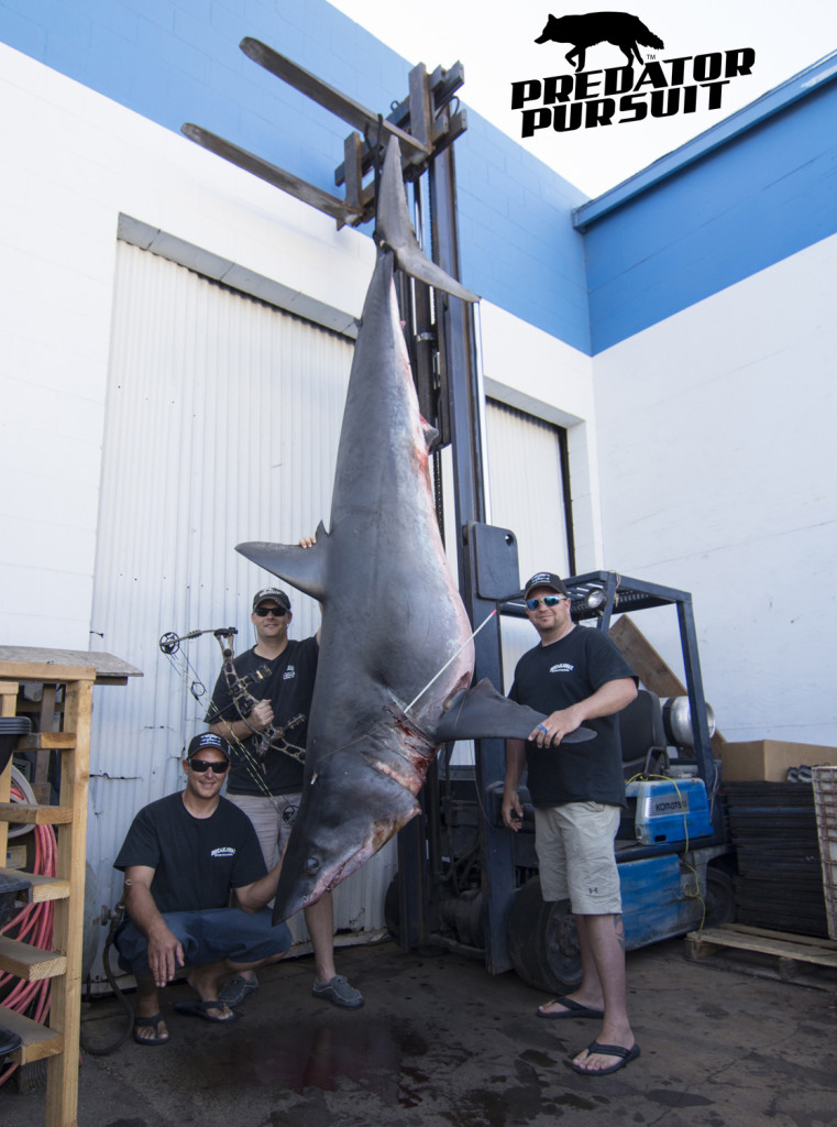 World Record Mako Shark