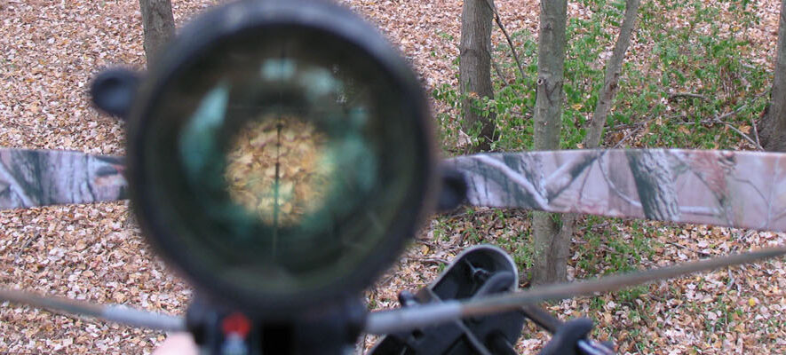 P1_crossbow_scope_treestand