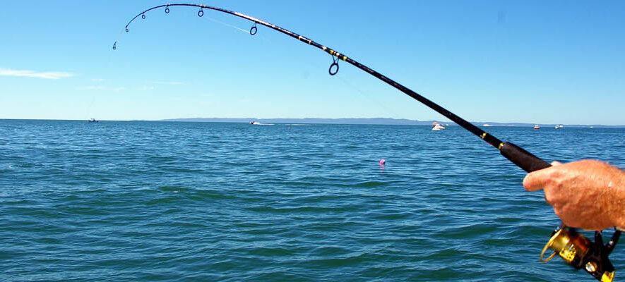 P1_fishing_hand-rod-reel